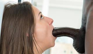 Downlode de la foto del sexo.